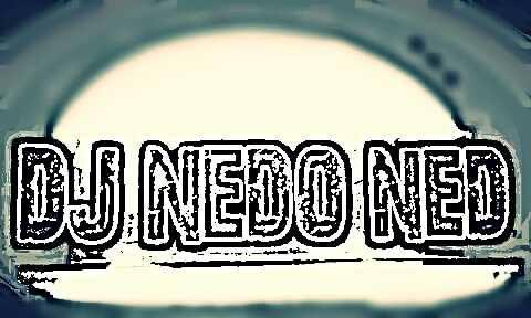 nedo_logo